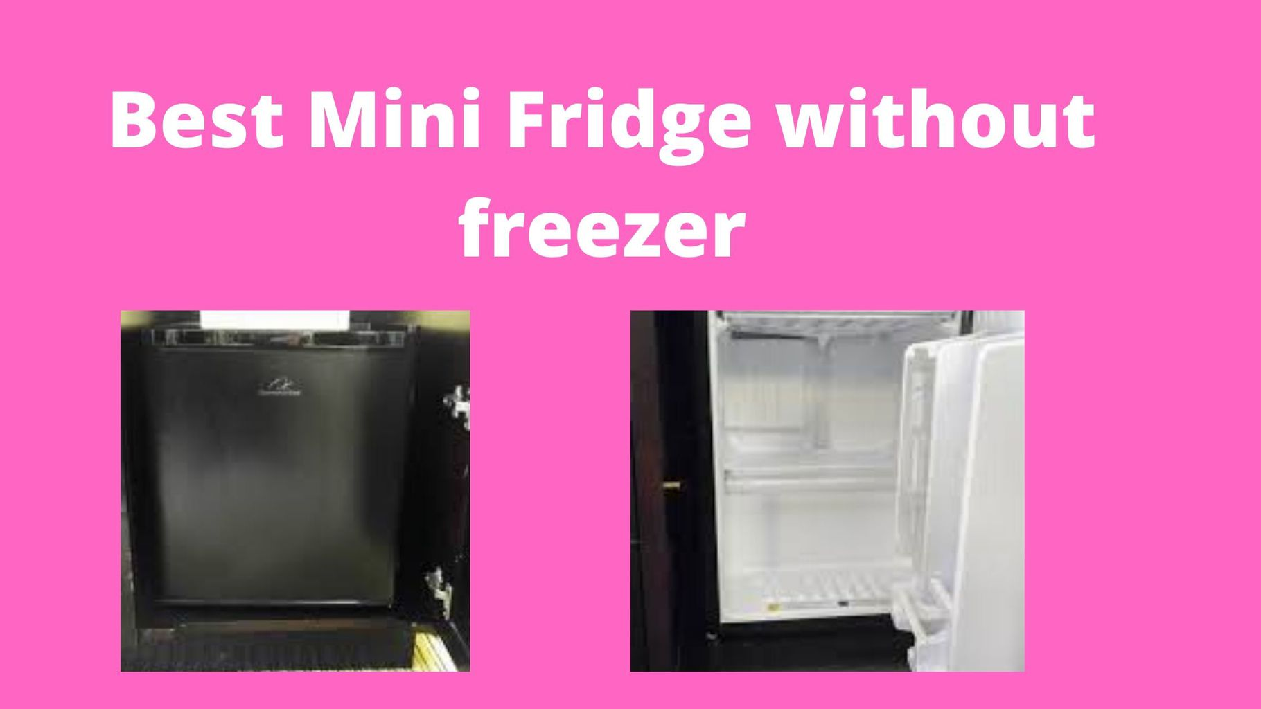 Best Mini Fridge without freezer