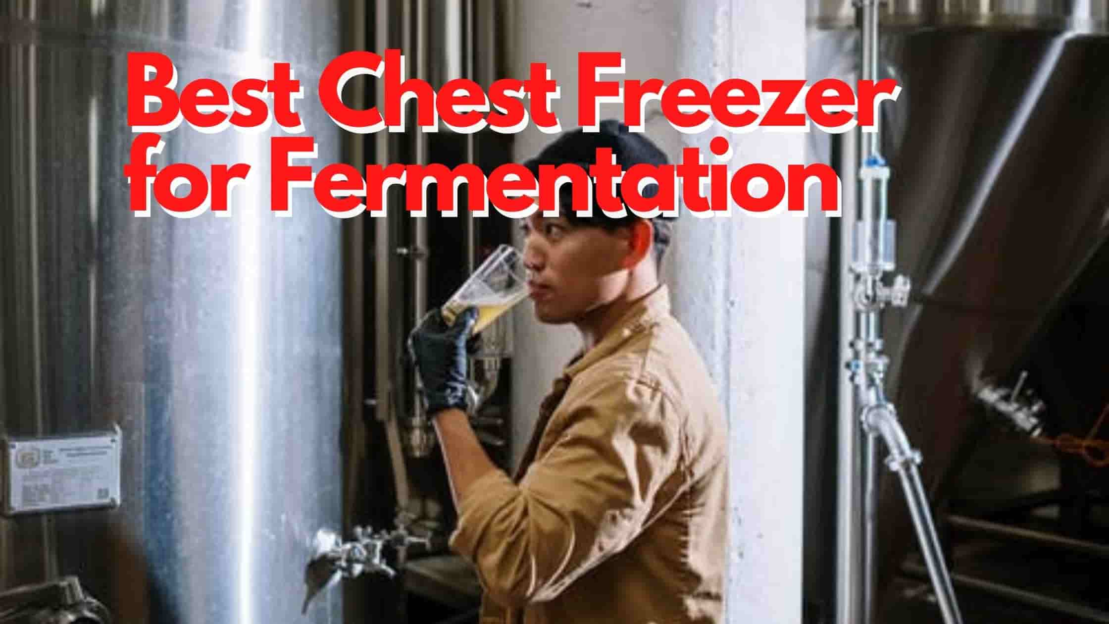 Best Chest Freezer for Fermentation