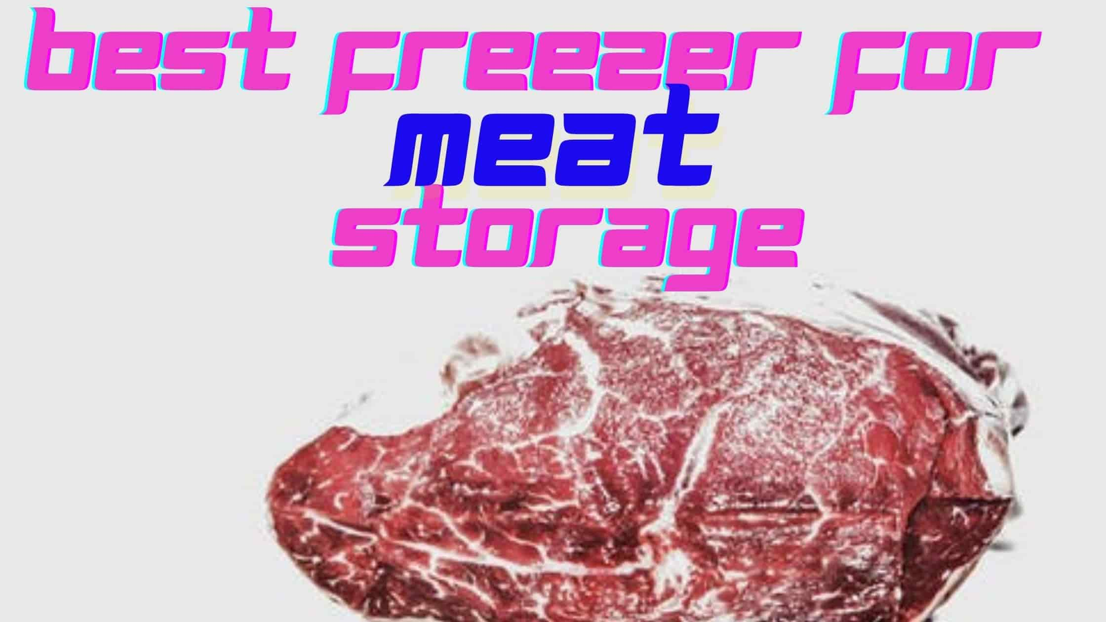 best Freezer for meat Storage