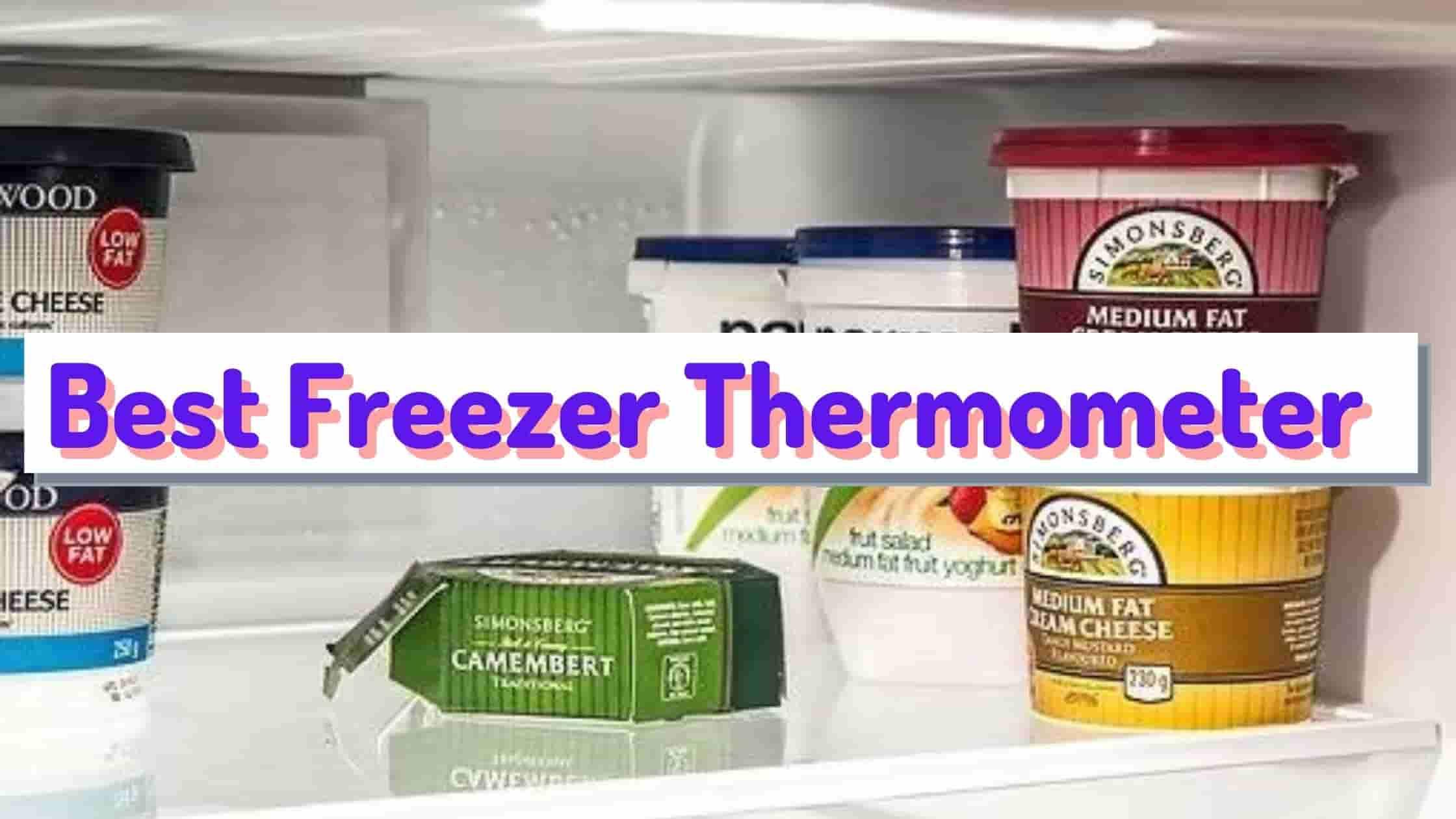 Best Freezer Thermometer